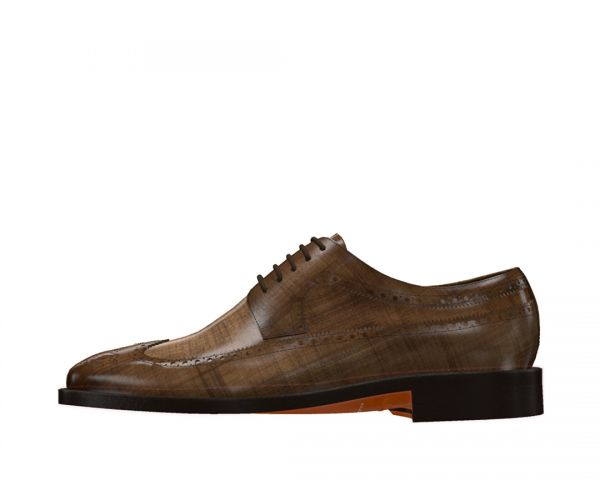 Longwing Blucher